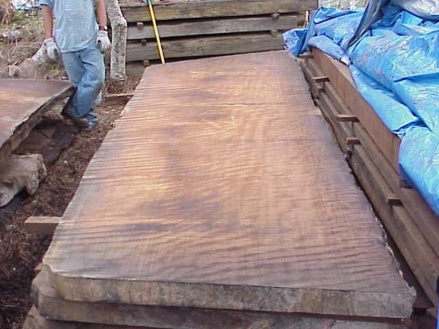 Redwood Slab Pdf Woodworking
